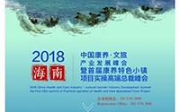 玖米文旅事业部经理人惊艳亮相2018中国康养·文旅产业发展峰会